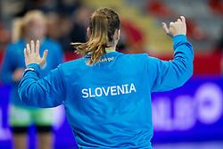 During handball match between Women National Teams of Slovenia and Montenegro in 2016 Women's European Championship Qualification, on October 11, 2015 in Arena Kodeljevo, Ljubljana, Slovenia. Photo by Urban Urbanc / Sportida