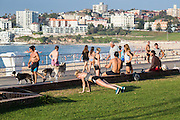 A typical scene at Bondi Beach early in the morning, as locals get fit and walk their dogs along Bondi Beach Promenade, Sydney, Australia.