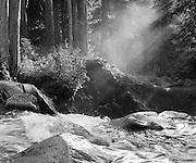 Riverlight. Mount Rainier National Park, Washington - 8/30/2008.