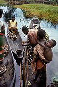 Africa, Libinza tribe, Ngiri River islands, Democratic Republic of the Congo. Market day: women from mainland tribe (probably Bodjaba) selling manioc to Libinza islanders.