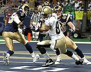 New Orleans wide receiver Joe Horn (87) graps the deflected pass for a fourth quarter touchdown in front of St. Louis Rams defenders Aeneas Williams (L) and Rich Coady (25).  The Saints defeated the Rams 28-25 in overtime at the Edward Jones Dome in St. Louis, Missouri, Sept. 26, 2004.