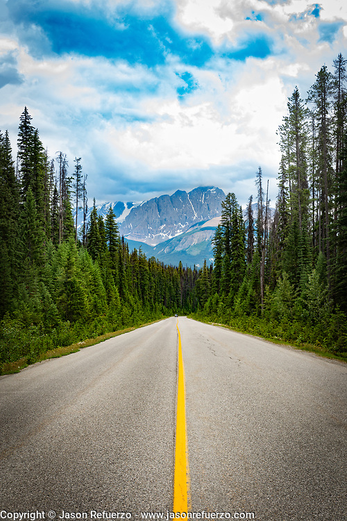 Road in Banff National Park