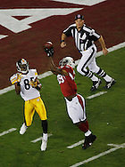 Super Bowl XLIII Arizona Cardinals against the Pittsburgh Steelers on February 1, 2009 at Raymond James Stadium in Tampa, Fl. (Roberto Gonzalez/Orlando Sentinel)