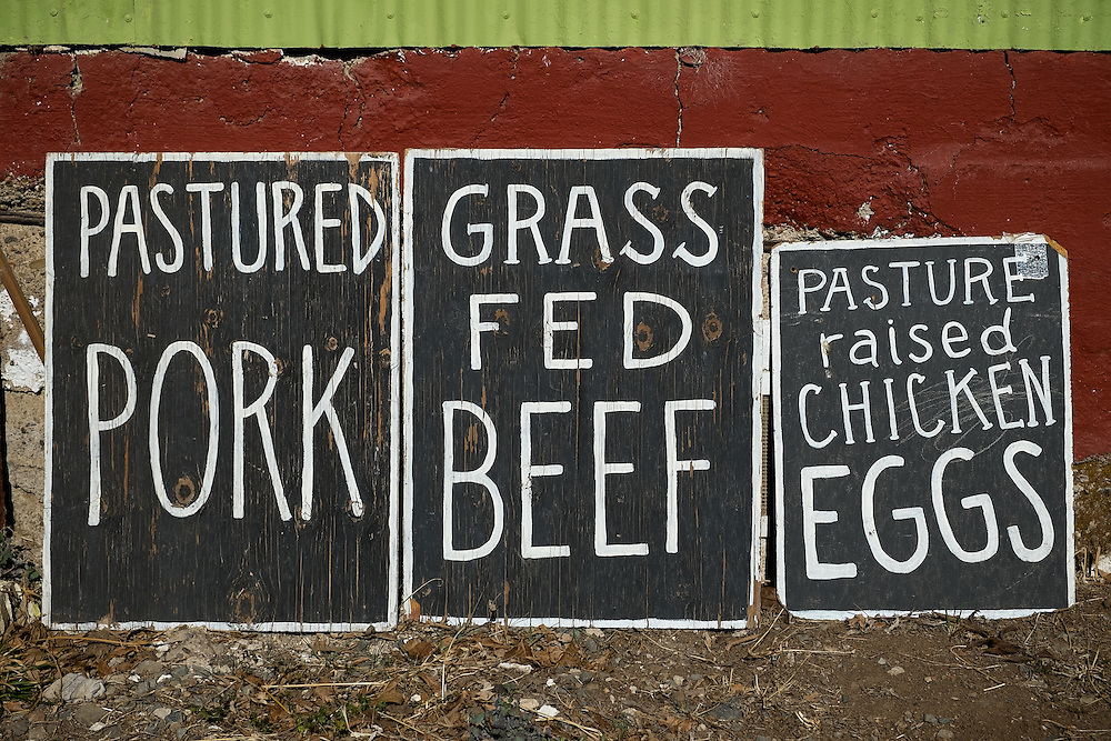 Grass Fed, Pastured & Sustainable Food