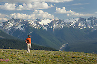 Hiker contemplating the peaks of the Upper Suiattle River, Glacier Peak Wilderness North Cascades Washington