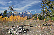 Campfire ring, golden aspen, Grand Tetons, Bridger Teton National Forest