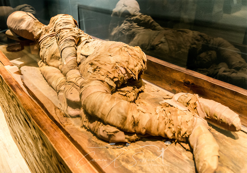 A mummy reclines in a display case at the Michael C. Carlos Museum at Emory University, July 8, 2014, in Atlanta, Georgia. The wrappings are made of linen, then soaked in tree resin. The Michael C. Carlos Museum was founded in 1876 and contains more than 17,000 artifacts in its permanent collections. (Photo by Carmen K. Sisson/Cloudybright)