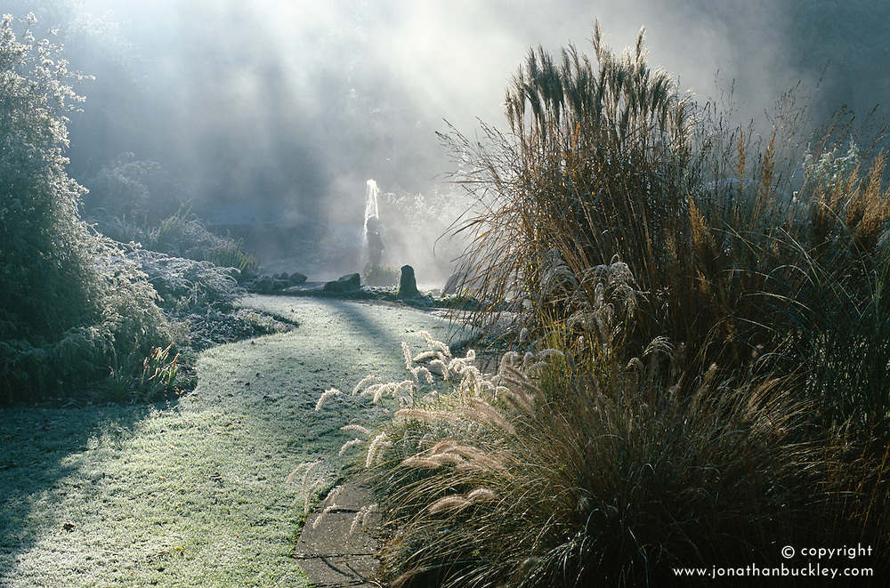 Winter mists and frost in the garden at Upper Mill Cottage, Kent. Grass path leading to small fountain. Grasses include Miscanthus sinensis 'Malepartus' and Pennisetum orientale. Design David and Mavis Seeney