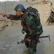 A soldier from the Afghan National Army (ANA) points to two suspected insurgents moving across a grape field during Operation Matawarkawel Sheppa in the Pashmul area in Zhari District located west of Kandahar City, Afghanistan. The operation was a Canadian lead effort in coordination with the Afghan National Army (ANA) and Royal Gurkha Rifles from the British Army.The Pashmul area has become well known for frequent insurgent activity and attacks on coalition forces.
