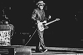 Elvis Costello at the Woodlands