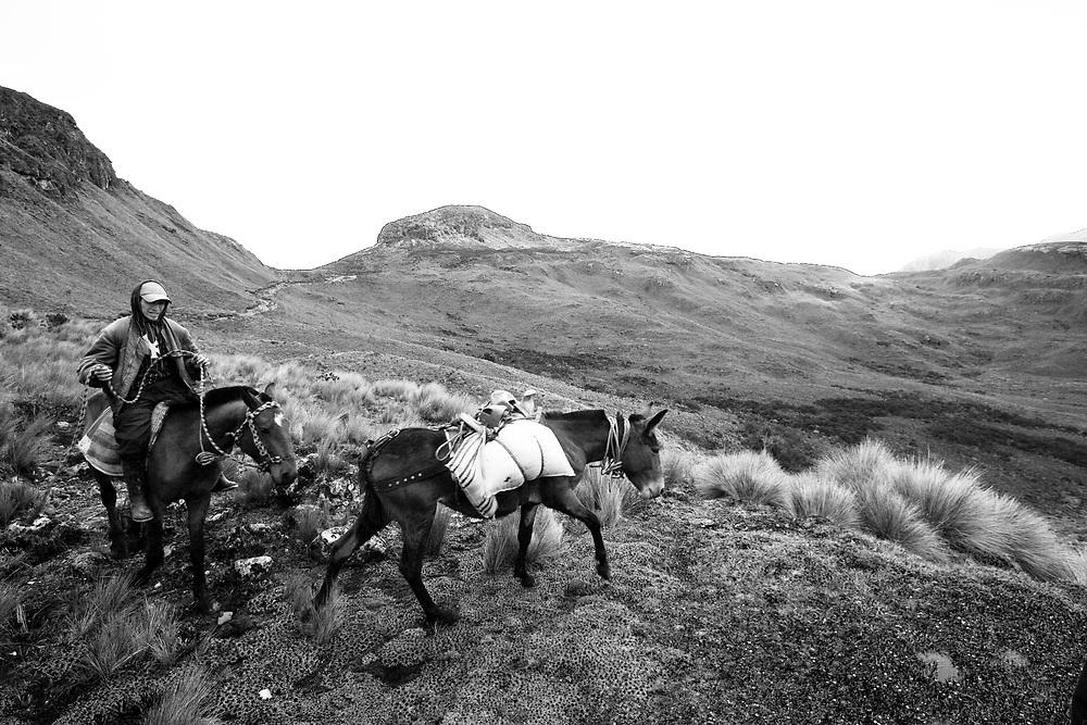 Horseman in Cajas National Park, Ecuador