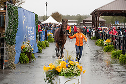 Blom Merel, NED, Rumour Has It<br /> World Equestrian Games - Tryon 2018<br /> © Hippo Foto - Dirk Caremans<br /> 16/09/2018