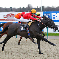 Black Cadillac and Daniel Muscutt winning the 2.50 race