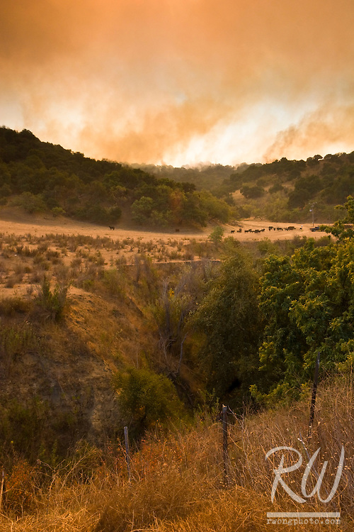 Brea Canyon Fire, Diamond Bar, California