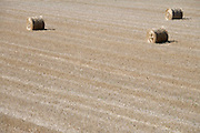 field with three straw bales