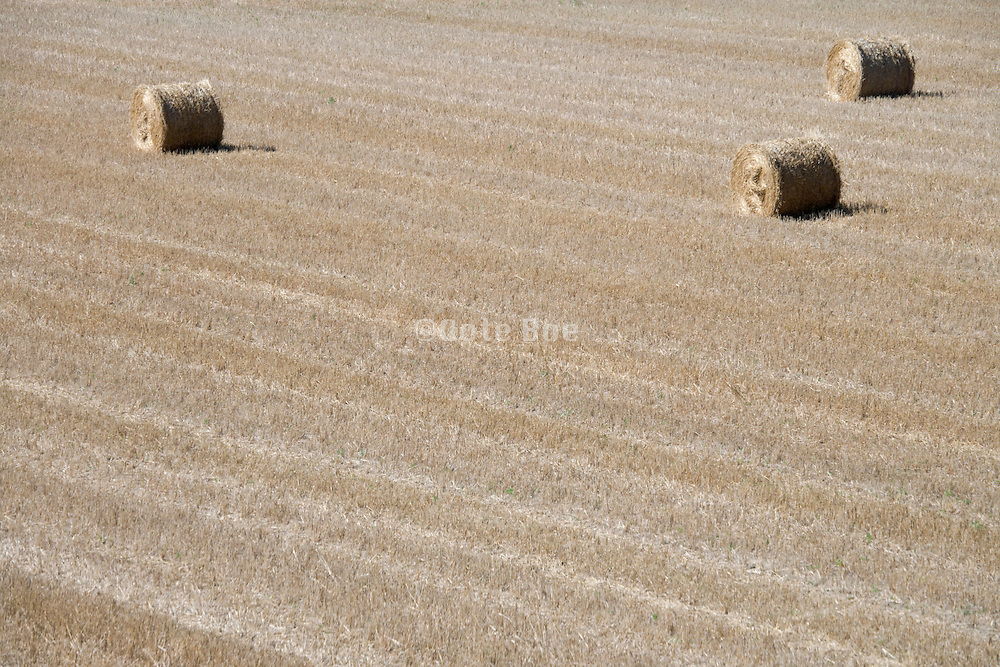 field with three straw bales