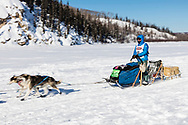 Musher Michael Baker competing in the 45rd Iditarod Trail Sled Dog Race on the Chena River after leaving the restart in Fairbanks in Interior Alaska.  Afternoon. Winter.