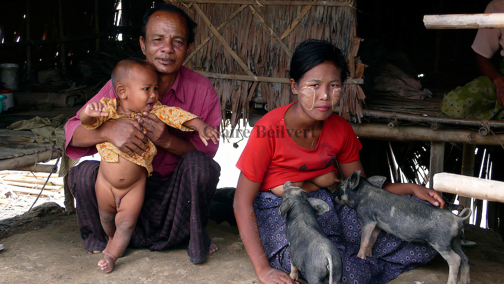 A Burmese family in the aftermath of Cyclone Nargis. The woman has to breastfeed the little pigs as they lost their mother in the cyclone. It is the only way to save them. These farmers have already lost most of their cattle.