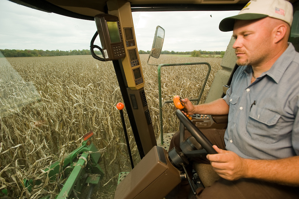 Man driving a tractor in a cornfield