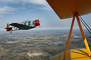 Off the yellow wings of a 1941 Stearman Biplane, Times staff writer Chuin-Wei Yap can be seen in the front seat of the cockpit of a 1955 T-6 Texan as pilot John Mackinson takes him for an aerobatic thrill ride above Zephyrhills Friday morning. The experience is part of the 2008 Barnstormer Tour by History Flight, and offers a variety of packages for a flight experience in a restored WWII aircraft..BRENDAN FITTERER | Times