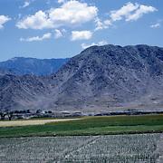 Late Summer? 1965<br /> Fallow fields. Green fields. Settlement in background.