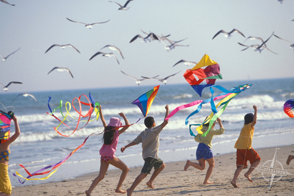 Children Flaying Kites on Beach