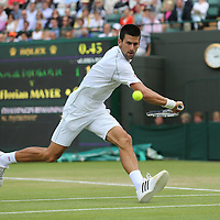 Djokovic_backhand_flic