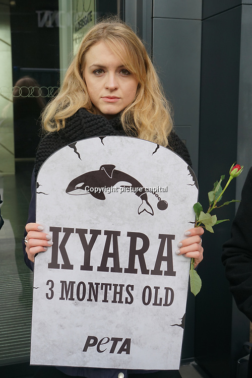 PETA activist protest during Thomas Cook Annual General Meeting in London on 8 Feb 2018. Campaigners install 'gravestone' and hold red roses for each of the orcas who have died at SeaWorld.