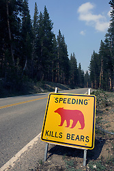 "A yellow and black road sign with a red bear pictured along Tioga Road that warns drivers that ""Speeding Kills Bears"", Yosemite National Park, California, USA."