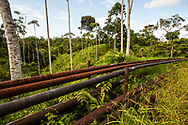 Oil wells and pipelines are part of the landscape in the north of the Amazon in Ecuador