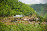 Vale of Rheidol Railway<br /> Ceredigion<br /> Mid<br /> Narrow gauge<br /> Rail<br /> Transport