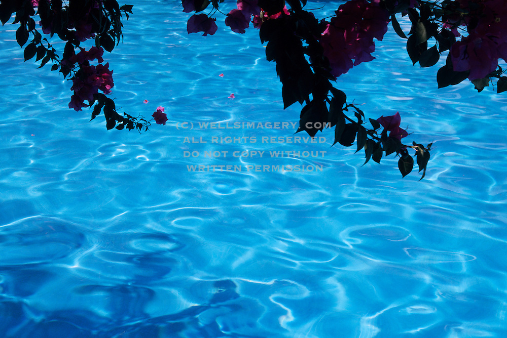 Image of a swimming pool in Cabo San Lucas, Baja California Sur, Mexico