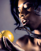 """Temptation"".<br /> This modern, and sensual take on the Garden of Eden was a collaboration with first time art model Ameena. To make this shot possible, we had a reptile trainer bring in over $8,000 in ball constrictor snakes of various colors and sizes. Once the color palette was chosen for the shot, out hair stylist - Latasha Binder worked on Ameena's hair based on a sketch I created of Medusa - of Greek mythology."