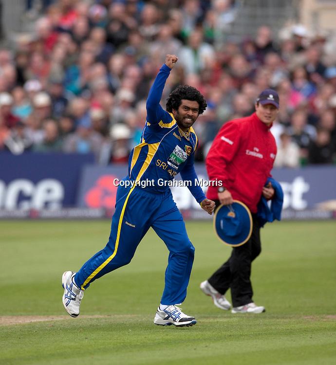Lasith Malinga celebrates removing Eoin Morgan during the T20 international between England and Sri Lanka at Bristol.  Photo: Graham Morris/photosport.co.nz