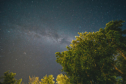Blick auf Bäume und den Sternenhimmel mit der Milchstraße über Kroatien, aufgenommen am 30.06.2019, Rezanci, Kroatien // view of trees and the starry sky with the Milky Way over Croatia, Rezanci, Croatia on 2019/06/30. EXPA Pictures © 2019, PhotoCredit: EXPA/ Florian Schroetter