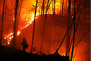 Beau Clark of the Naches Ranger District, holds his section of the line during a massive burnout on the No Mans Land Fire in Arkansas on March 17, 2006.  During the course of the day, our twenty-person firecrew from the Wenatchee National Forest in Washington State, brought fire along eleven miles of fire line and roads.  This photo was made at 3:30 am as we edged the burnout up along fresh dozer line with no end in sight.  Our crew eventually tied the line in that morning, completing nearly a 30 hour shift.  (Photo by Aaron Schmidt © 2006)