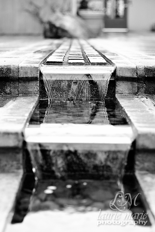 Tiered water feature at Bellevue Botanical Gardens - bw