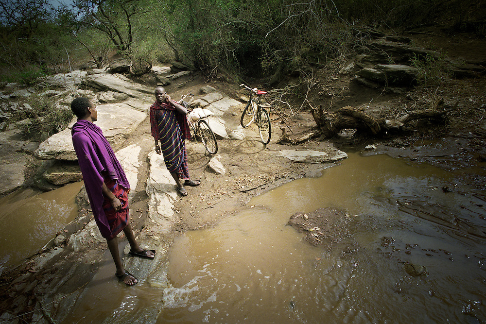 Tanzania, traditional Maasai life. Inspecting the water level of a river a couple of miles from Loiborsoit. The rains are far overdue and finding water for the cattle gets more difficult by the day.