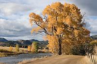 Arkansas River near Howard, Colorado
