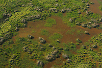 Aerials over the Danube delta rewilding area, Romania