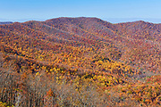 Late autumn colors in Shenandoah National Park, Virginia