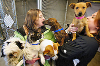 Mary Powell, an adoption canine specialist, left, and Rondi Renaldo, the executive director at Kootenai Humane Society hold the five dogs that were rescued Monday from the Humane Society of Central Washington in Yakima. The small dogs were scheduled to be euthanized Tuesday at the shelter in Yakima, prompting Renaldo to rescue the animals due to the high demand for small dogs in Kootenai County.
