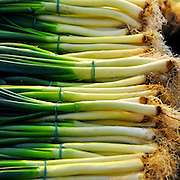 Spring onions at a Market Stall Photographed in Budapest, Hungary