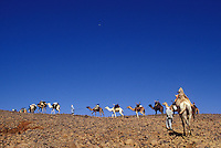 scenes in Algeria.........