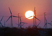 The sun rises over a field of commercial turbines in Palm Springs, Calif. The Coachella Valley surrounding the desert community has 3,800 turbines and provides California with 1 1/2 to 2 percent of the state's total energy.