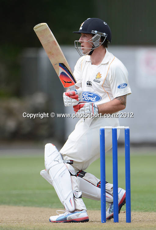 Wellington's Luke Ronchi in action. Plunket Shield Cricket, Auckland Aces v Wellington Firebirds at Eden Park Outer Oval. Auckland on Monday 26 November 2012. Photo: Andrew Cornaga/Photosport.co.nz