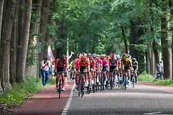 Peloton with CCC Team leading during 2019 Dutch National Road Race Championships Men Elite, Ede, The Netherlands, 30 June 2019, Photo by Pim Nijland / PelotonPhotos.com | All photos usage must carry mandatory copyright credit (Peloton Photos | Pim Nijland)