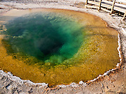 2004 photo: Morning Glory Pool is a hot spring in the Upper Geyser Basin of Yellowstone National Park, Wyoming, USA. Microbial mats of thermophilic (heat-loving) cyano-bacteria and algae color the pool brown, yellow, and green. The pool's center lacks the high temperature pure blue water seen in previous decades. Its glory has faded as objects tossed in by vandals have blocked hot water inlets. The rising groundwater of Morning Glory Pool is heated by a hotspot of light, hot, molten mantle rock near the surface. 640,000 years ago, a supereruption of the Yellowstone Supervolcano created the Yellowstone Caldera which measures 34 miles (55 km) by 45 miles (72 km). Any time in the next few hundred millennia, the active volcano of Yellowstone could cause vast destruction in North America and modify world climate. Yellowstone was the first national park in the world (1872), and UNESCO honored it as a World Heritage site in 1978.