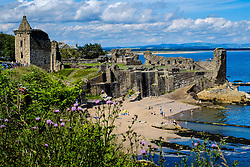 St Andrews Castle, St Andrews, Fife, Scotland<br /> <br /> (c) Andrew Wilson | Edinburgh Elite media