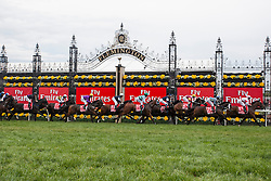© Licensed to London News Pictures. 06/11/2012. The Horses racing during the Emirates Melbourne Cup at the Flemington Racecourse, Melbourne. Photo credit : Asanka Brendon Ratnayake/LNP